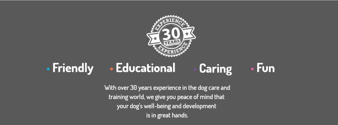 Camp Scotty Dog Care Birmingham Alabama